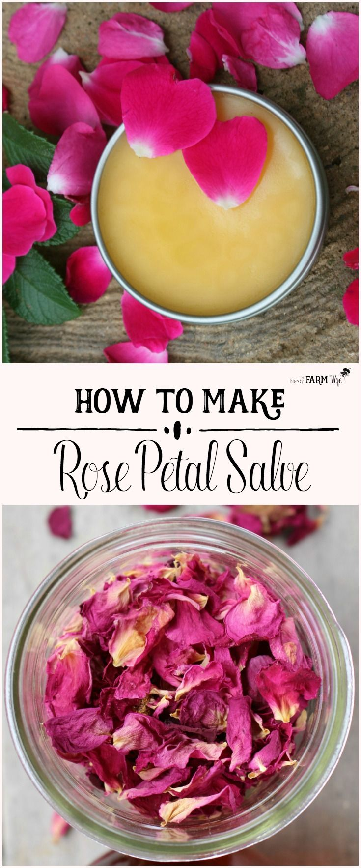 This rose petal salve recipe features real rose petals along with rosehip seed oil, which is well known for its benefits when applied to mature, sun-damaged, dry and irritated skin.
