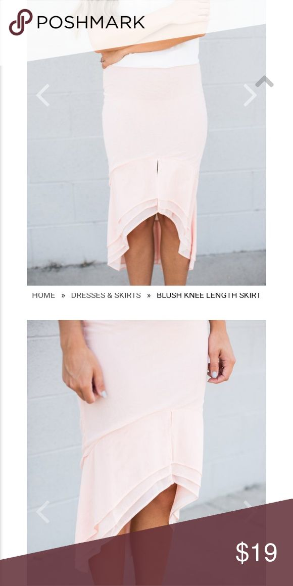 Blush Knee Length Skirt NWOT Blush colored knee length skirt with high/low hem. …