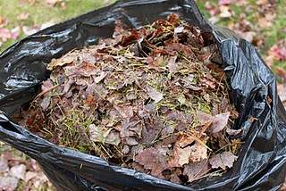Don't throw away your leaves this fall! Poke holes in the bag, add a few scoops of soil or compost, and some water, and start a compost to use next spring!