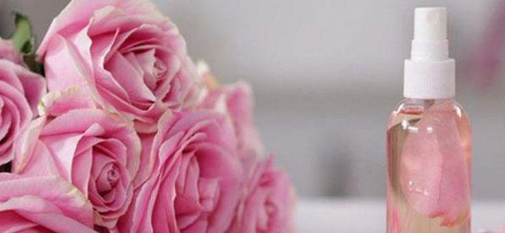 Így használd fel a tiszta rózsa illóolajat és rózsavizet!