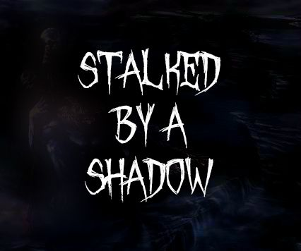 Stalked by a Shadow - http://www.astralperceptions.com/2018/01/stalked-by-shadow.html -   canid, cryptids, eyewitness account, humanoids, legends, Navajo, New Mexico, nightstalker, paranormal, skinwalkers, unexplained phenomena