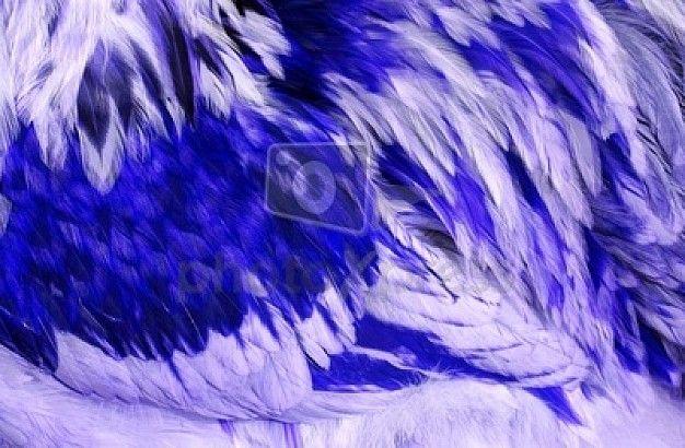 dier textuur blauw