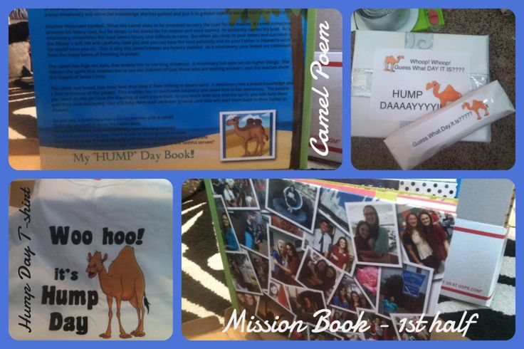 hump day shirt and hardbound book with pix and memories from the first half of her mission!