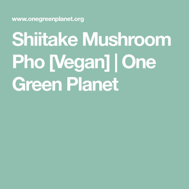 Shiitake Mushroom Pho [Vegan] | One Green Planet