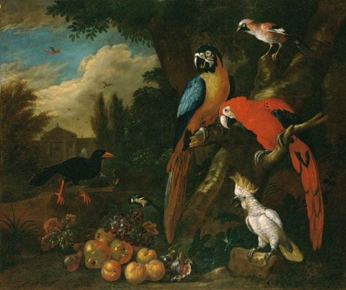 Bogdani, Jakob Still-Life with Fruit, Parrots amd a White Cockatoo  ca. 1710