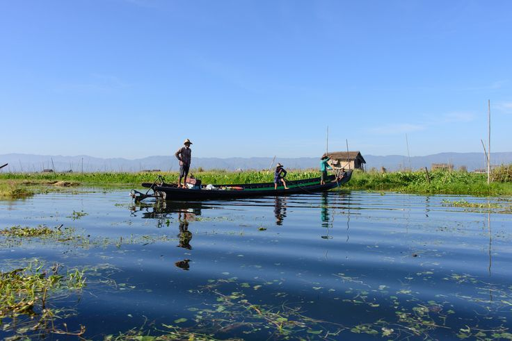 https://flic.kr/p/t4WBq2 | Inle Lake, Myanmar - Local Fisherman | Inle Lake is a freshwater lake located in the Nyaungshwe Township of Taunggyi District of Shan State, Myanmar (Burma). It is the second largest lake in Myanmar with an estimated surface area of  116 km2, and one of the highest at an elevation of 880m.   Most transportation on the lake is traditionally by small boats, or by somewhat larger boats fitted with single cylinder inboard diesel engines. Local fishermen are known for…
