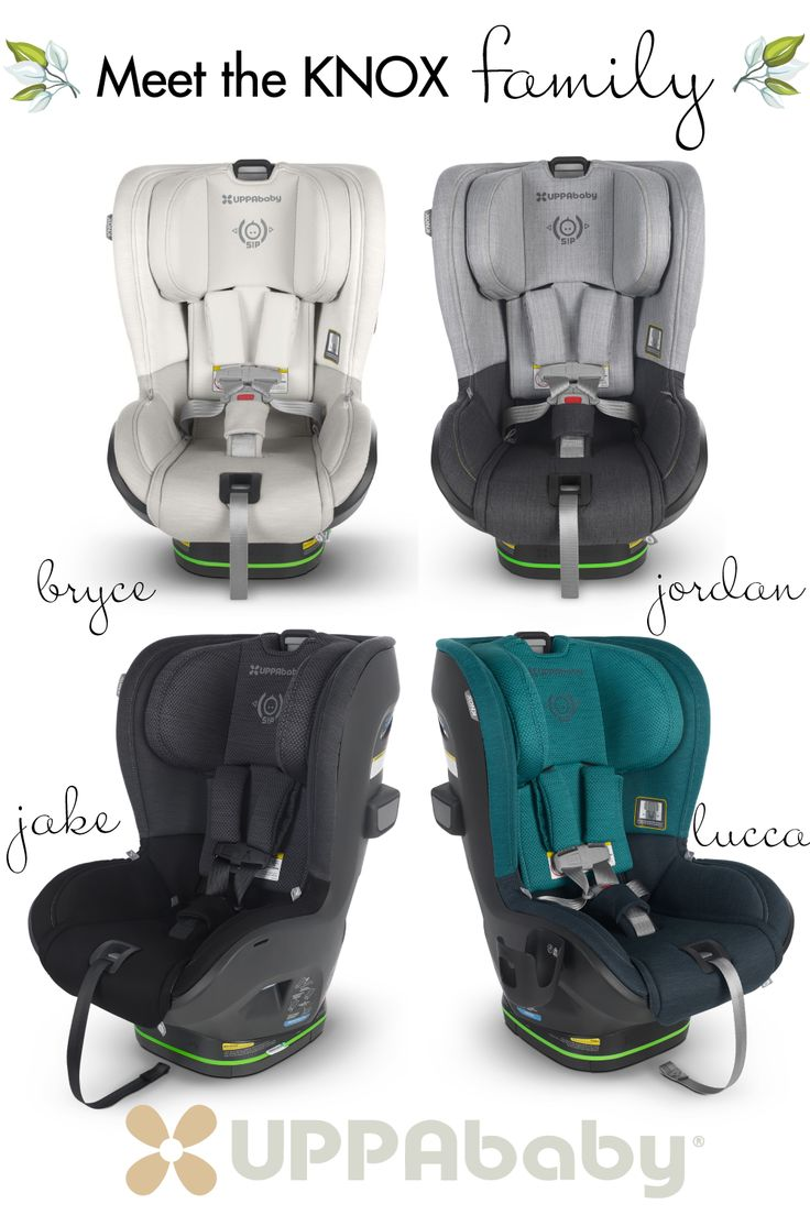 Meet the KNOX family from UPPAbaby! in 2020 Car seats