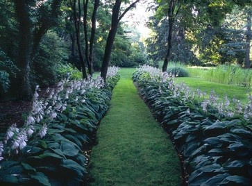 Hosta Landscape Design Ideas