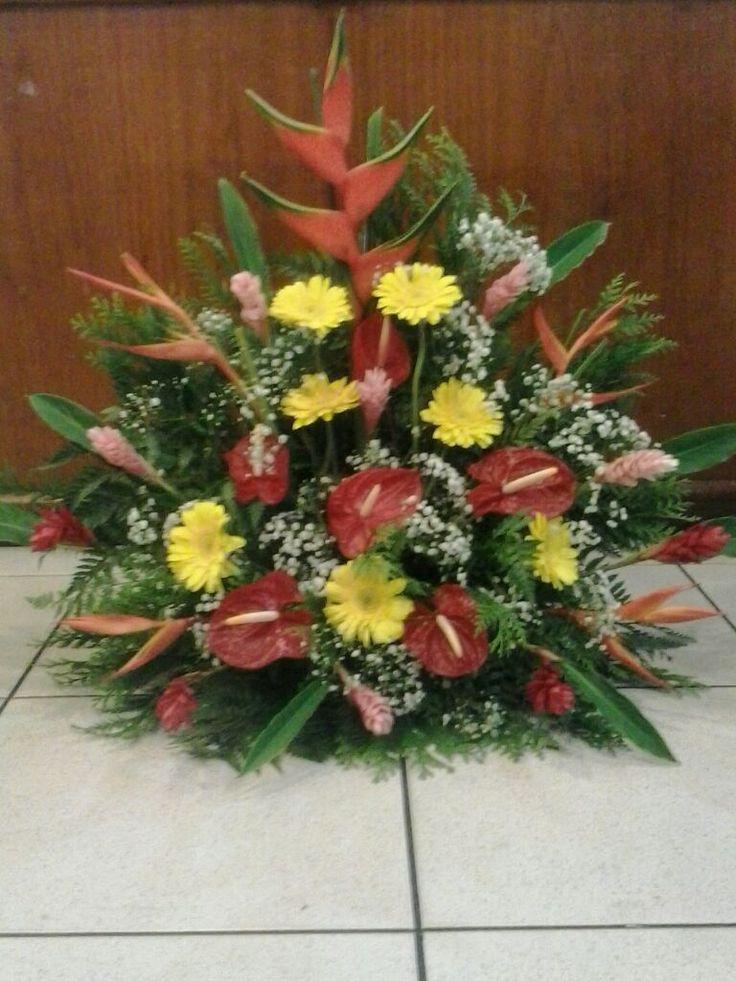 Floricultura Encontro das Flores Natal RN