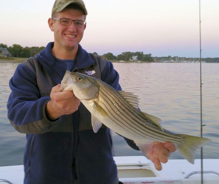25 best chesapeake bay fishing images on pinterest for Chesapeake bay striper fishing