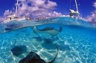 Cayman Islands - Yes water is this clear and yes you can swim with the rays.