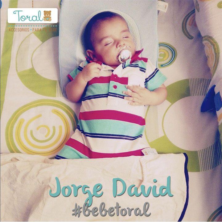 Jorge David ¡Nuestro Bebé Toral del día! Durmiendo cómodo y seguro con sus productos Toral. Comparte las imágenes de tú bebé con #bebetoral.   TORAL ¡Le damos la bienvenida a la vida!