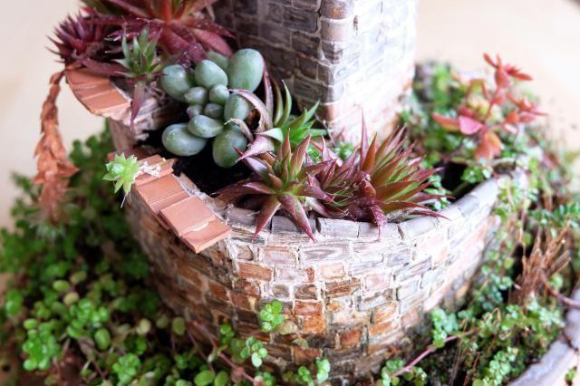 Atalaya espiral No Linde - Incremental Mini-Gardens #nolinde #moss #succulents