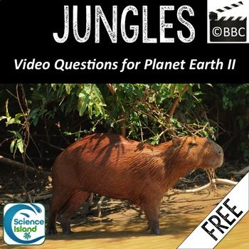 Video Questions for the JUNGLES episode of the awesome NEW Planet Earth II Series by the BBC! Fill-in-the-blank questions maximize student engagement and turn video day into productive classroom time. Works well for an Ecology unit in Life Science or Biology and is perfect for an emergency sub plan!