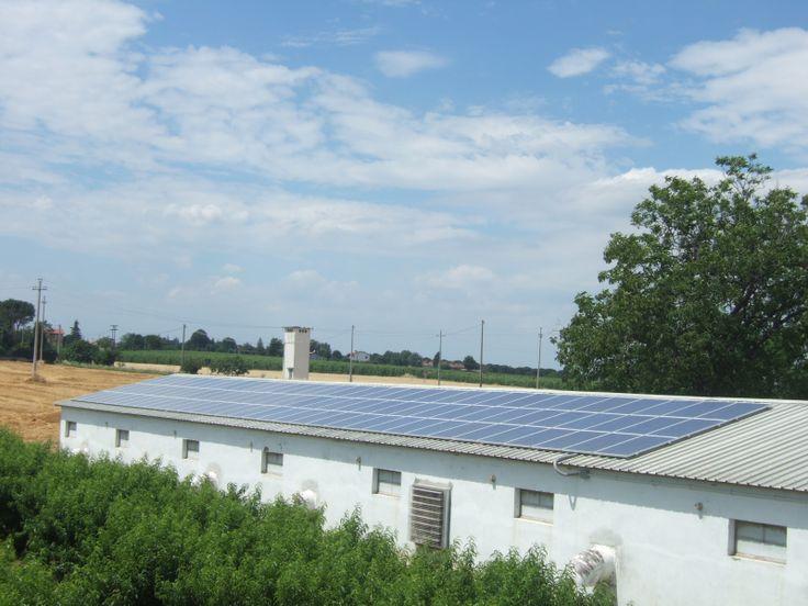 20 kW solar farm on a poultry farm. Italy 2008
