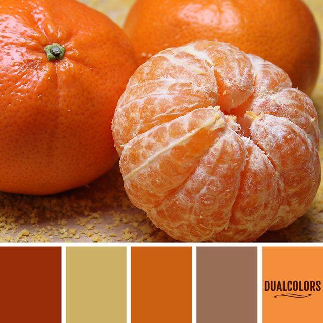 Color Paleta 10 Paletas De Color Naranja Paleta De Colores Pintura Paletas De Colores