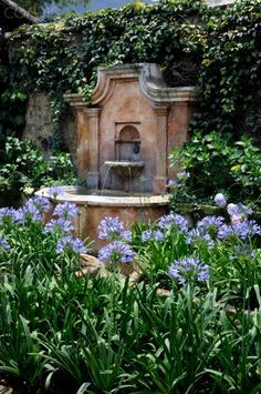 Wall Fountain With Agapanthus In The Foreground.