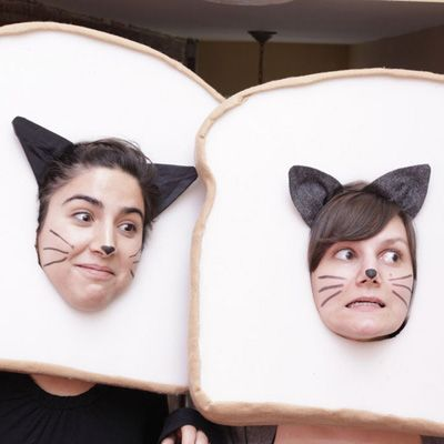 Don't settle for that same old black-cat costume again this year. How about Taco Cat? Maru? Breaded Cat?