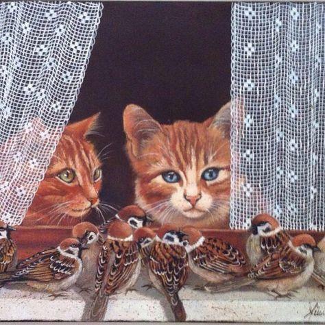 chats et moineaux