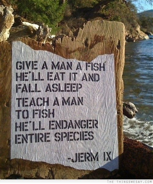 teach me how to fish