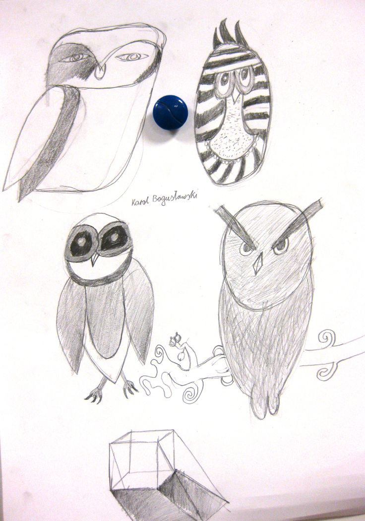 Sowy - Mali Artyści