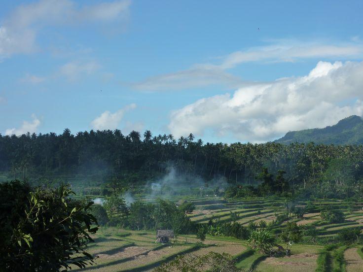 Bali. Copyright Jacqueline Auvigne