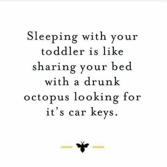 Sleeping with your toddler is like sharing your bed with a drunk octopus looking for its keys.