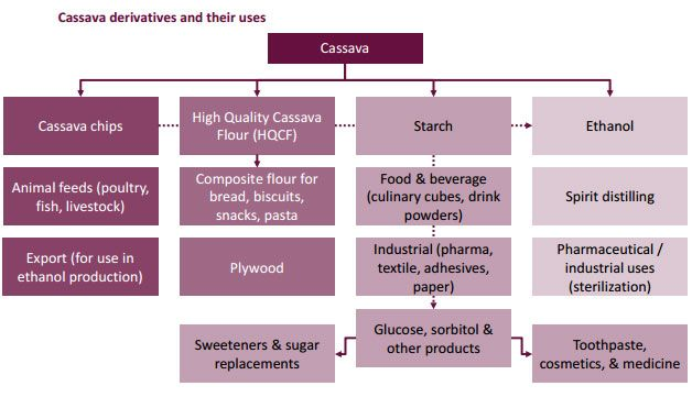 Cassava can be deep processed into cassava alcohol and modified starch, which can be used for making chemical products, glue, paper, pharmaceutical and cosmetics.