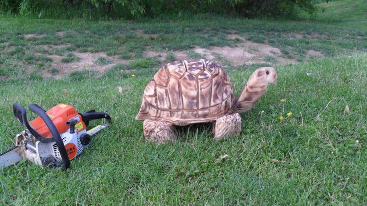 Best wooden carvings turtle images on pinterest