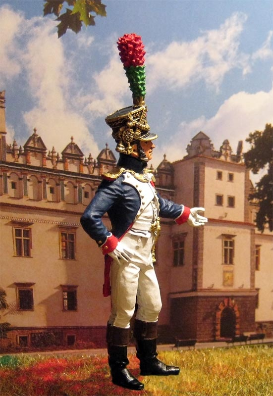 Officer of Fusiliers Chasseurs of the Middle Guard-Our Collection Of Military Figures