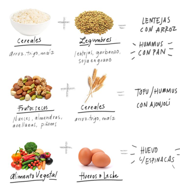 ¿Qué son y cómo se comen? Si lo tuyo no es comer animales, es importante que sepas de dónde y cómo obtener tu porción diaria de proteína que provengan de fuentes vegetales.