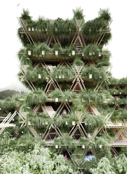 The Future: A City Made From Bamboos  Based in Vienna and Beijing, architectural firm Penda's latest installation called Rising Canes explores the possibility of finding a solution to minimize the congestion in urban landscapes. Built from large bamboo structures, the project is an environmentally friendly and sustainable effort to eliminate the concept of the concrete jungle. Their main motive is to create a social organic impact.