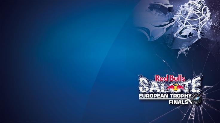 Red Bulls Salute 2013
