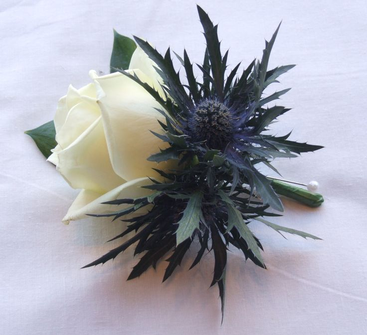 scottish wedding flowers | The ladies each had a single ivory rose with freesia, eryngium and gyp ...