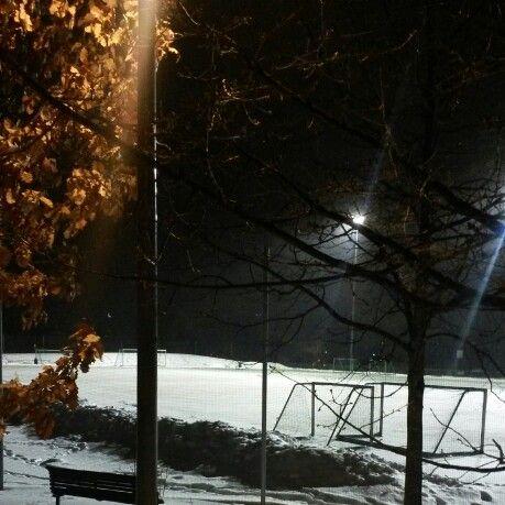 Vinter-Tøyen