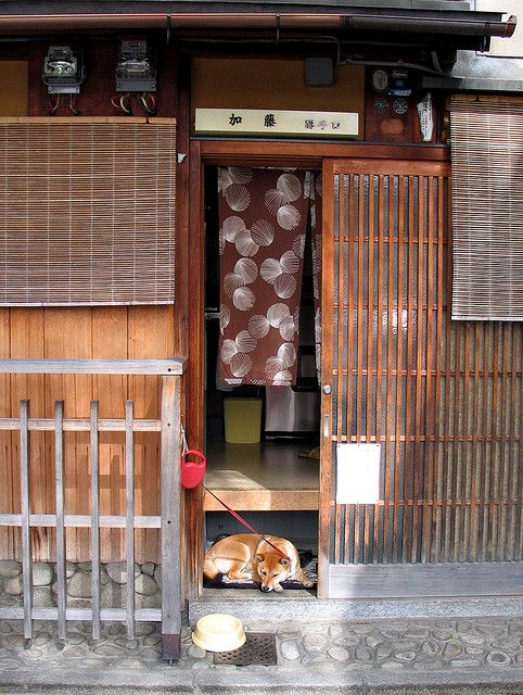 Japanese traditional dog at traditional residence, Japan
