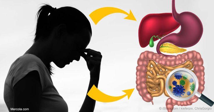 Nuestro sistema digestivo y sistema inmune están relacionados a nuestro humor y funcionamiento en general http://articulos.mercola.com/sitios/articulos/archivo/2017/07/11/remedios-naturales-para-la-depresion.aspx?utm_source=espanl&utm_medium=email&utm_content=art2&utm_campaign=20170711&et_cid=DM150542&et_rid=2075505784