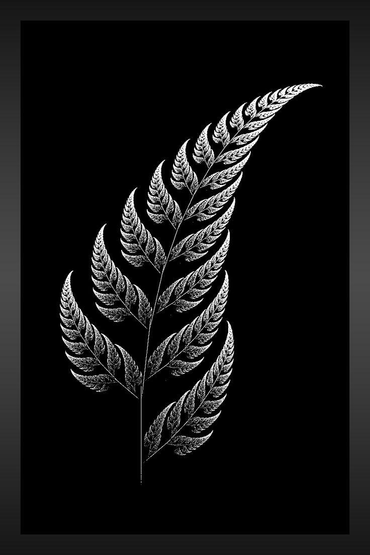 New Zealand Silver Fern The silver fern by aeires