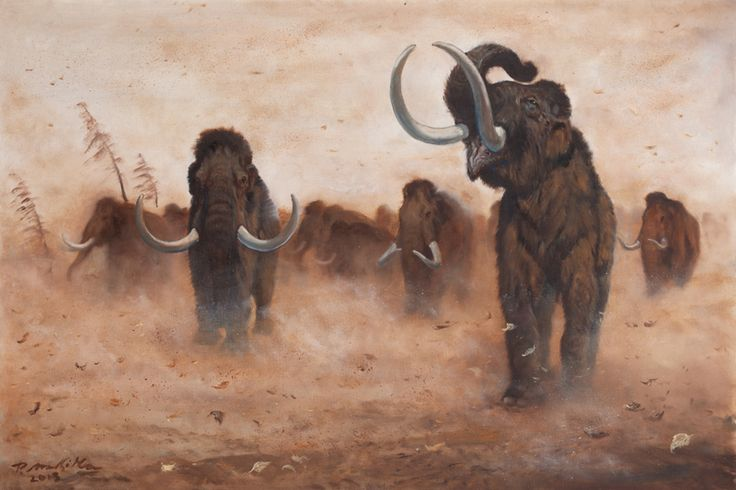 A Herd of Mammuthus primigenius by Petr Modlitba