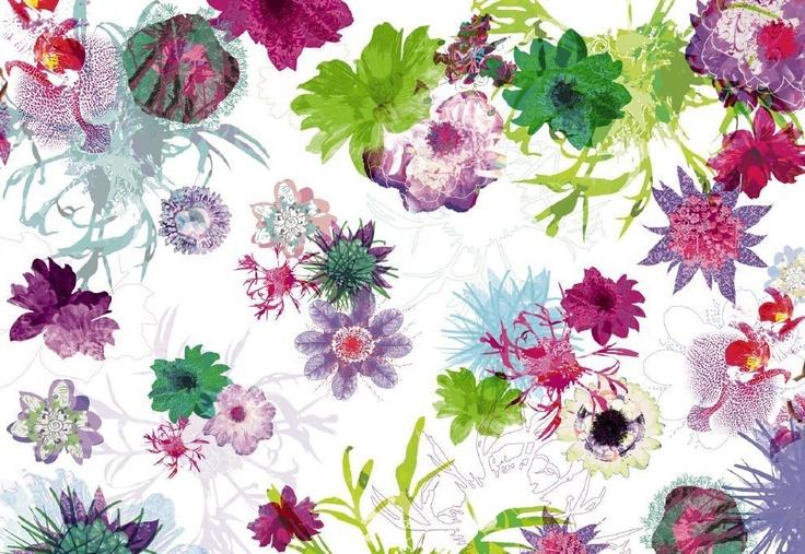 Fotobehang Komar New Releases - Fleurs de Paris met zijn prachtig gekleurde bloemen!