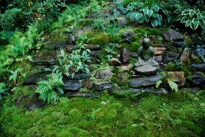 I like the moss and ferns