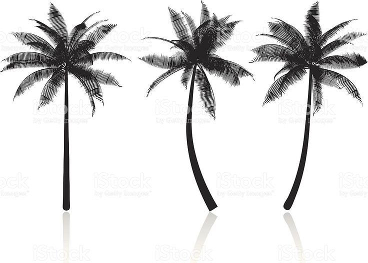 As silhuetas das palmeiras vetor e ilustração royalty-free royalty-free