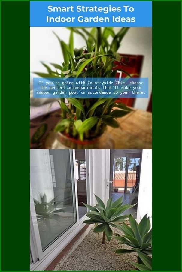 Having Difficulties With Horticulture Indoor Garden Ideas
