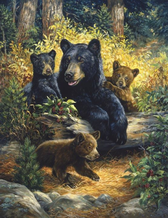 Linda Picken Bears Family                                                                                                                                                                                 Plus