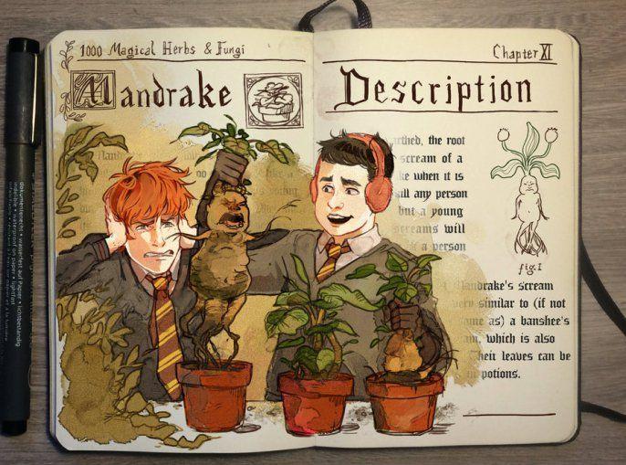 Gabriel Piccolo - Harry Potter Notebook Mandrake