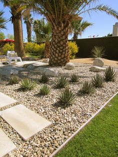 18 Best Palm Springs Mid Century Landscaping Images On