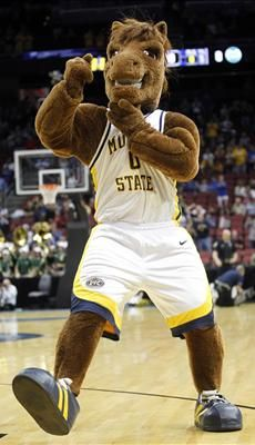 45 Best College Mascots Ohio Valley Images On Pinterest