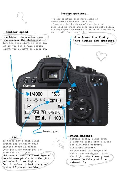 Canon Dslr Camera Diagram Download Wiring Diagrams