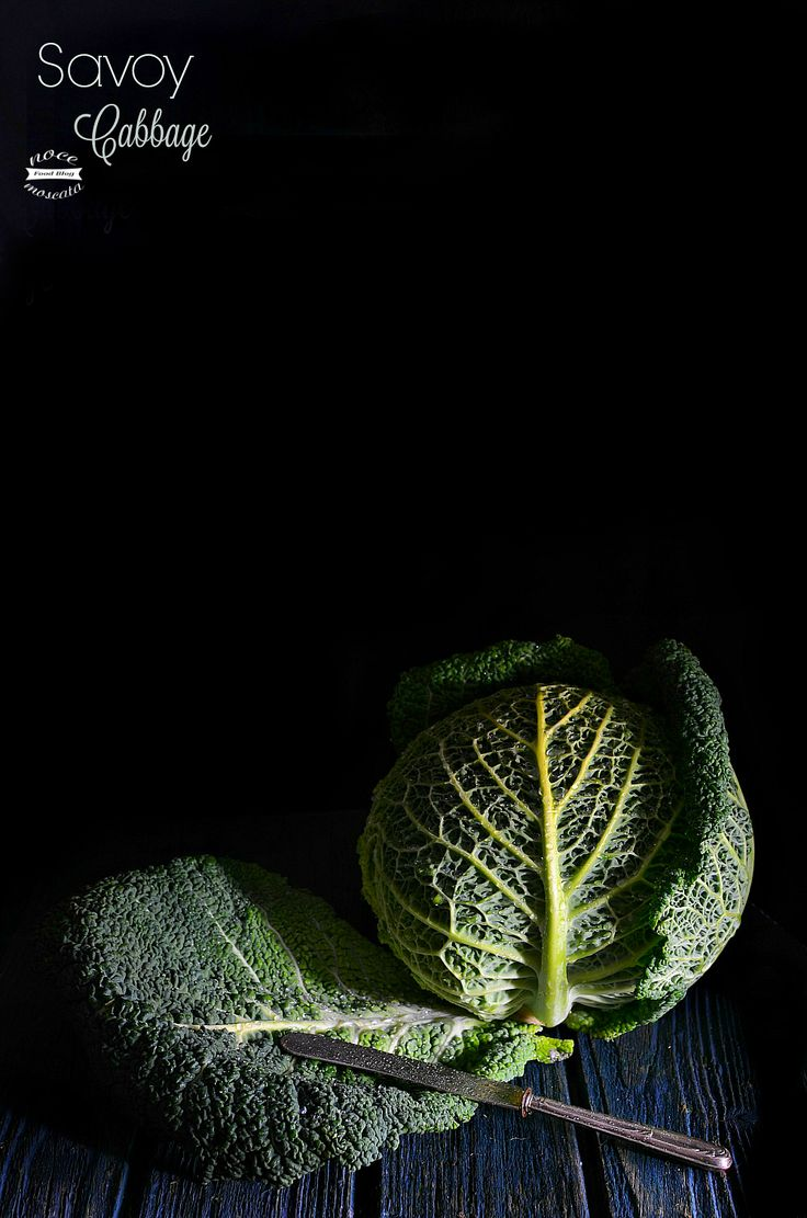 Cavolo verza  Savoy Cabbage food photography