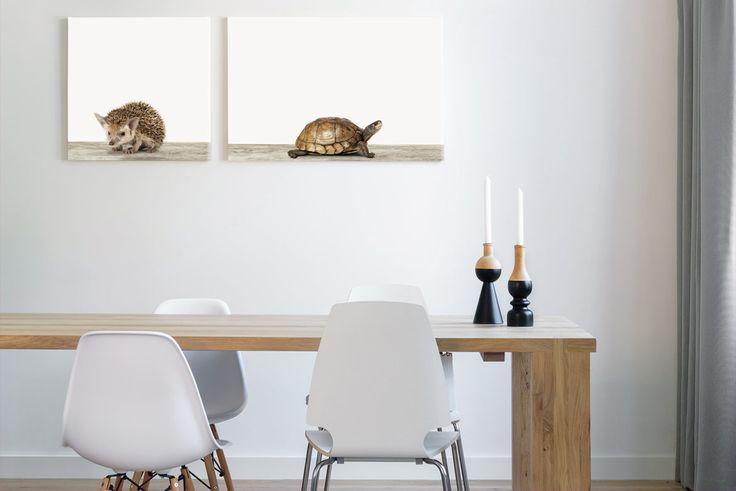 Op zoek naar leuke ideeën voor de kinderkamer of babykamer? kies dan voor het egeltje aan de muur. De schildpad is aandoenlijk en beiden staan ook mooi in de woonkamer, slaapkamer of keuken.